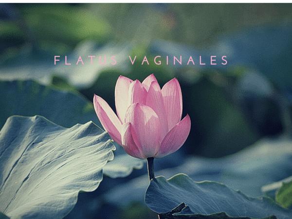 Flatus Vaginales